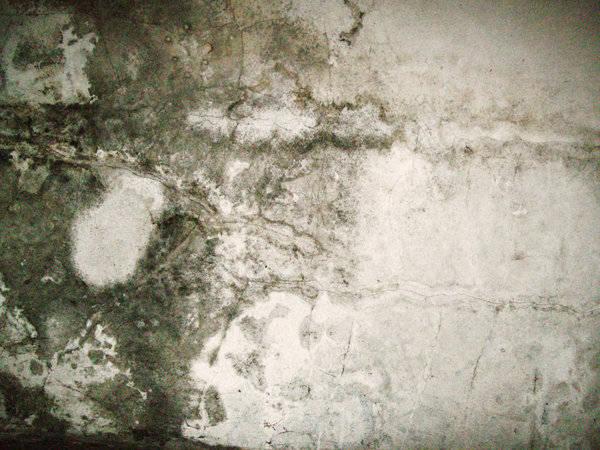 prvenir et traiter lhumidit dans la maison - Traiter L Humidite Dans Une Maison