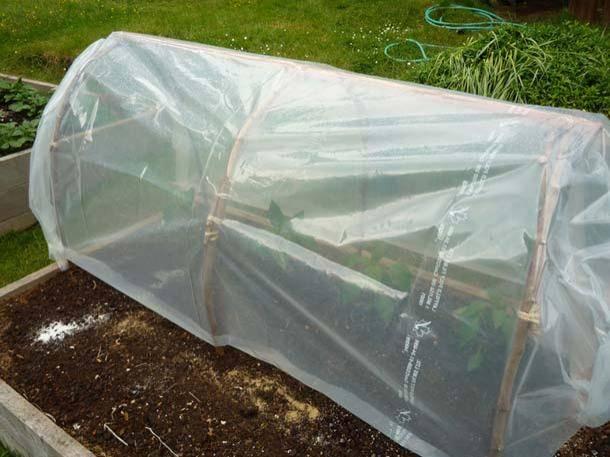 Fabriquer une serre tunnel pas ch re pour le jardin - Fabriquer serre tunnel ...