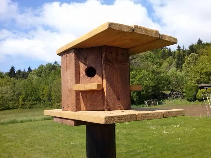 Cabane oiseaux en bois de palette guide astuces for Comfabriquer cabane oiseau
