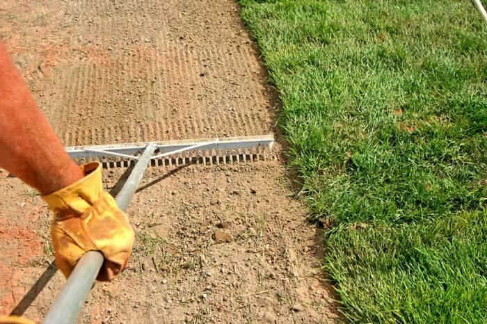 Comment planter son gazon guide astuces - Comment planter du gazon ...