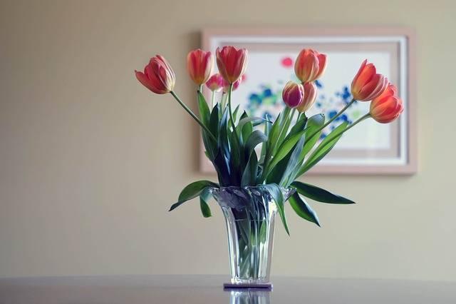 que mettre dans l u0026 39 eau pour conserver les fleurs