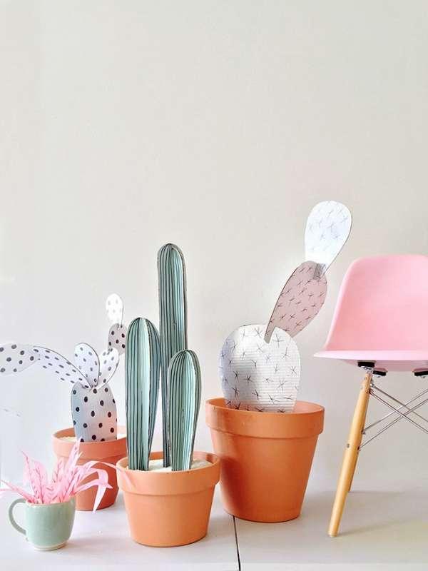 Des cactus décoratifs